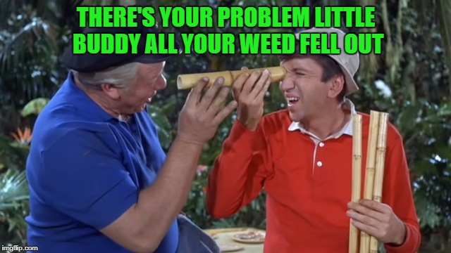 there's your problem little buddy all your weed fell out | THERE'S YOUR PROBLEM LITTLE BUDDY ALL YOUR WEED FELL OUT | image tagged in gilligans island week | made w/ Imgflip meme maker