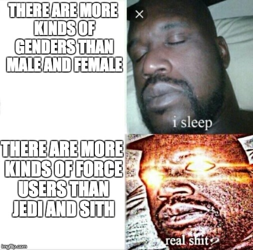 People are so ignorant on this issue... | THERE ARE MORE KINDS OF GENDERS THAN MALE AND FEMALE THERE ARE MORE KINDS OF FORCE USERS THAN JEDI AND SITH | image tagged in memes,sleeping shaq,gender,star wars,jedi,sith | made w/ Imgflip meme maker