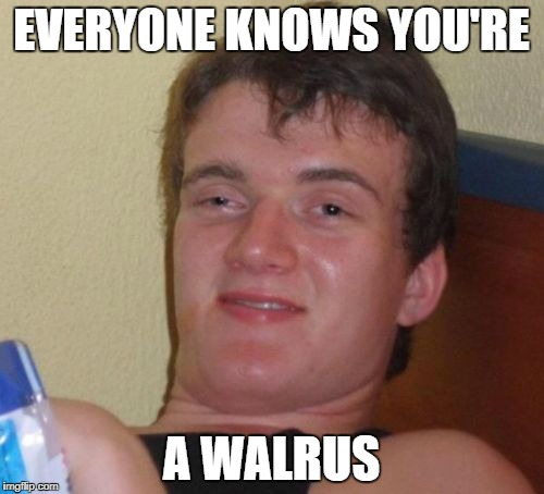 10 Guy Meme | EVERYONE KNOWS YOU'RE A WALRUS | image tagged in memes,10 guy | made w/ Imgflip meme maker