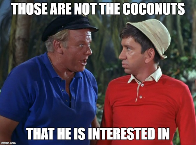 gilligan | THOSE ARE NOT THE COCONUTS THAT HE IS INTERESTED IN | image tagged in gilligan | made w/ Imgflip meme maker