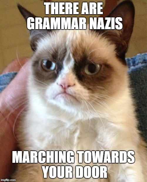 Grumpy Cat Meme | THERE ARE GRAMMAR NAZIS MARCHING TOWARDS YOUR DOOR | image tagged in memes,grumpy cat | made w/ Imgflip meme maker