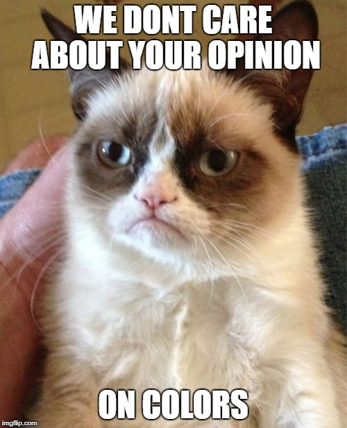 Grumpy Cat Meme | WE DONT CARE ABOUT YOUR OPINION ON COLORS | image tagged in memes,grumpy cat | made w/ Imgflip meme maker
