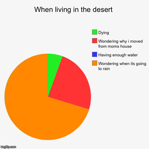 When living in the desert | Wondering when its going to rain, Having enough water, Wondering why i moved from moms house, Dying | image tagged in funny,pie charts | made w/ Imgflip pie chart maker