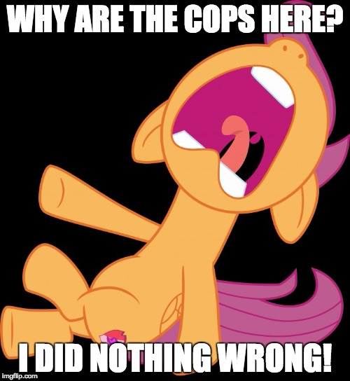 Or did she? | WHY ARE THE COPS HERE? I DID NOTHING WRONG! | image tagged in frightened scootaloo,memes,scootaloo,ponies,cops | made w/ Imgflip meme maker