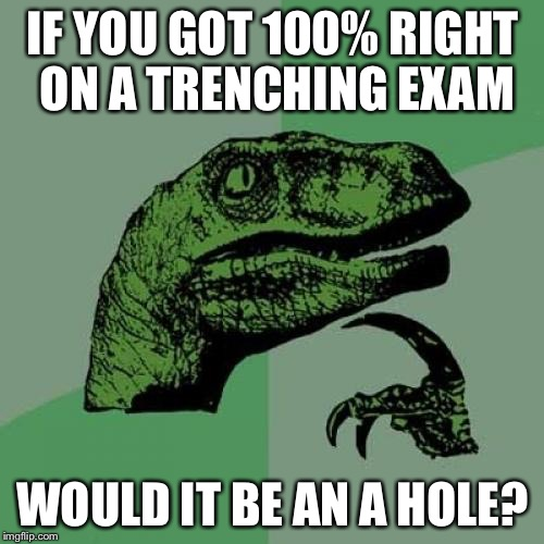 Philosoraptor Meme | IF YOU GOT 100% RIGHT ON A TRENCHING EXAM WOULD IT BE AN A HOLE? | image tagged in memes,philosoraptor | made w/ Imgflip meme maker