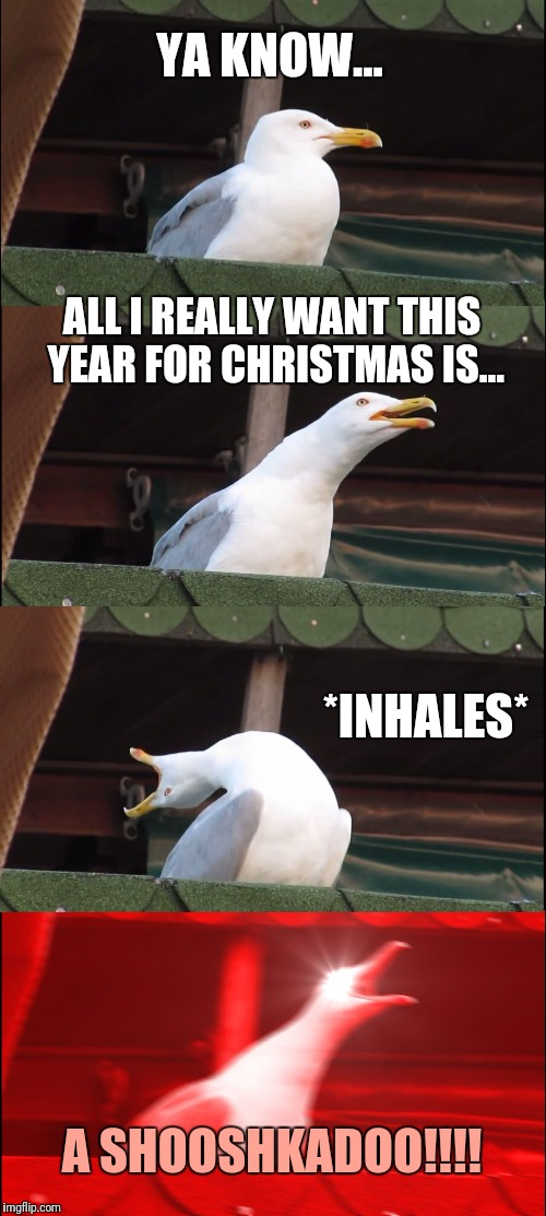 Inhaling Seagull Meme | YA KNOW... ALL I REALLY WANT THIS YEAR FOR CHRISTMAS IS... *INHALES* A SHOOSHKADOO!!!! | image tagged in memes,inhaling seagull | made w/ Imgflip meme maker