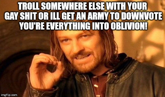 One Does Not Simply Meme | TROLL SOMEWHERE ELSE WITH YOUR GAY SHIT OR ILL GET AN ARMY TO DOWNVOTE YOU'RE EVERYTHING INTO OBLIVION! | image tagged in memes,one does not simply | made w/ Imgflip meme maker