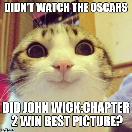 Not even a nomination for best Gun Fu? | DIDN'T WATCH THE OSCARS DID JOHN WICK:CHAPTER 2 WIN BEST PICTURE? | image tagged in memes,smiling cat,oscars 2017 | made w/ Imgflip meme maker