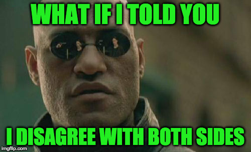 Matrix Morpheus Meme | WHAT IF I TOLD YOU I DISAGREE WITH BOTH SIDES | image tagged in memes,matrix morpheus | made w/ Imgflip meme maker
