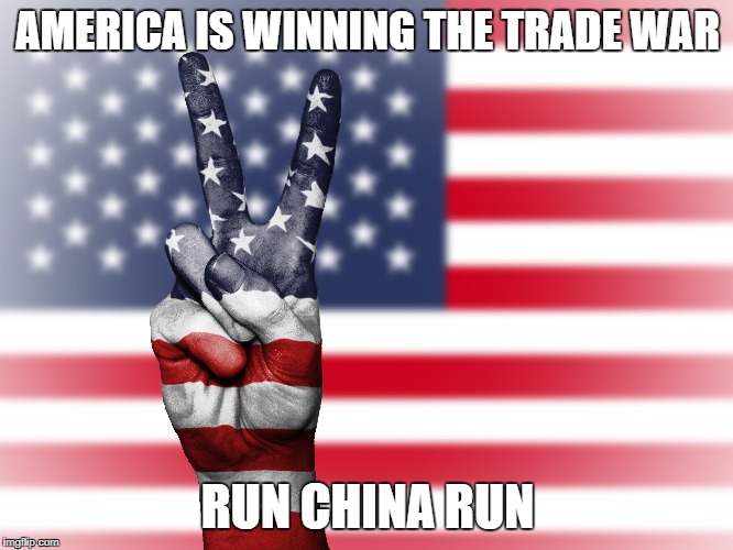 America's trade war | AMERICA IS WINNING THE TRADE WAR RUN CHINA RUN | image tagged in make america great again | made w/ Imgflip meme maker