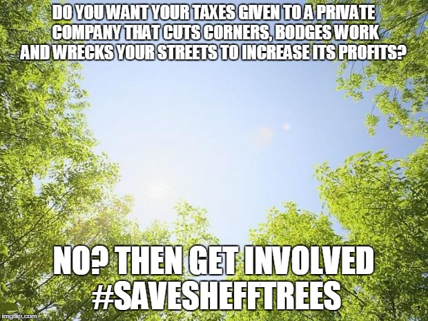 sunshine trees | DO YOU WANT YOUR TAXES GIVEN TO A PRIVATE COMPANY THAT CUTS CORNERS, BODGES WORK AND WRECKS YOUR STREETS TO INCREASE ITS PROFITS? NO? THEN G | image tagged in sunshine trees | made w/ Imgflip meme maker