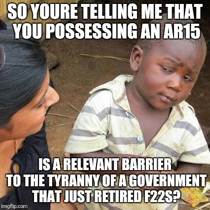 Third World Skeptical Kid Meme | SO YOURE TELLING ME THAT YOU POSSESSING AN AR15 IS A RELEVANT BARRIER TO THE TYRANNY OF A GOVERNMENT THAT JUST RETIRED F22S? | image tagged in memes,third world skeptical kid | made w/ Imgflip meme maker