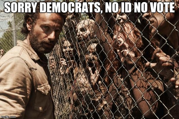 Zombies | SORRY DEMOCRATS, NO ID NO VOTE | image tagged in zombies | made w/ Imgflip meme maker