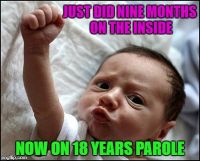 Will it be good or bad time? | JUST DID NINE MONTHS ON THE INSIDE NOW ON 18 YEARS PAROLE | image tagged in baby raising fist,memes,born into captivity,funny,baby,parole | made w/ Imgflip meme maker