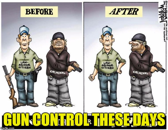 GUN CONTROL THESE DAYS | image tagged in gun control | made w/ Imgflip meme maker