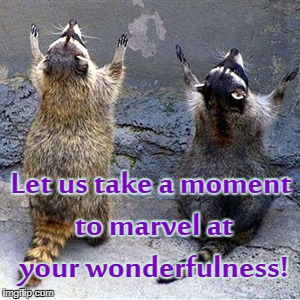 Let us take a moment to marvel at your wonderfulness! | image tagged in praise the lord | made w/ Imgflip meme maker