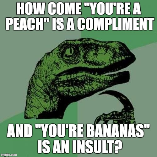 "Philosoraptor Meme | HOW COME ""YOU'RE A PEACH"" IS A COMPLIMENT AND ""YOU'RE BANANAS"" IS AN INSULT? 