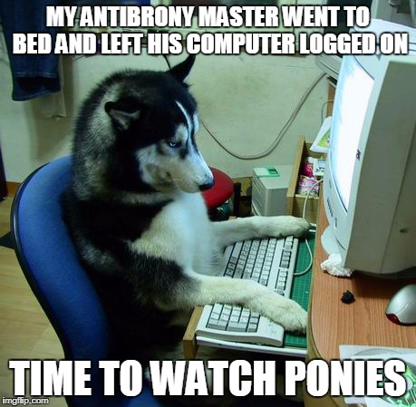 I Have No Idea What I Am Doing Meme | MY ANTIBRONY MASTER WENT TO BED AND LEFT HIS COMPUTER LOGGED ON TIME TO WATCH PONIES | image tagged in memes,i have no idea what i am doing | made w/ Imgflip meme maker