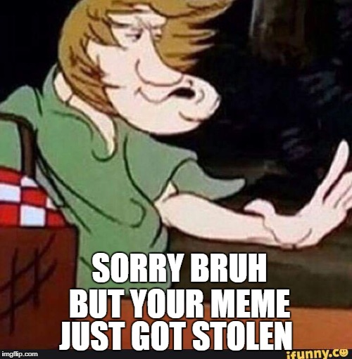 Shaggy | SORRY BRUH BUT YOUR MEME JUST GOT STOLEN | image tagged in shaggy | made w/ Imgflip meme maker