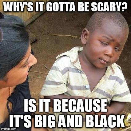 Third World Skeptical Kid Meme | WHY'S IT GOTTA BE SCARY? IS IT BECAUSE IT'S BIG AND BLACK | image tagged in memes,third world skeptical kid | made w/ Imgflip meme maker