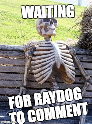 Waiting Skeleton Meme | WAITING FOR RAYDOG TO COMMENT | image tagged in memes,waiting skeleton | made w/ Imgflip meme maker