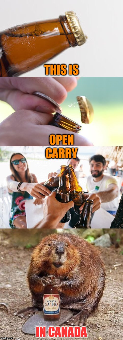 Open Carry Laws In Canada Are More Quenching :) | THIS IS IN CANADA OPEN CARRY | image tagged in memes,open carry,beer,canada,funny memes,jokes | made w/ Imgflip meme maker