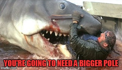 YOU'RE GOING TO NEED A BIGGER POLE | made w/ Imgflip meme maker