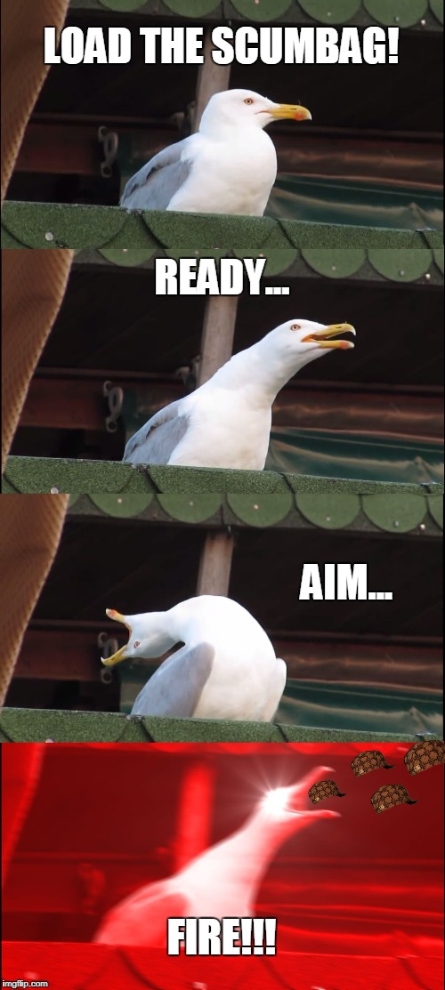 Inhaling Seagull Meme | LOAD THE SCUMBAG! READY... AIM... FIRE!!! | image tagged in memes,inhaling seagull,scumbag | made w/ Imgflip meme maker