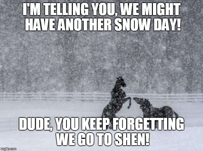 Snow Day? | I'M TELLING YOU, WE MIGHT HAVE ANOTHER SNOW DAY! DUDE, YOU KEEP FORGETTING WE GO TO SHEN! | image tagged in snow day,shenendehowa | made w/ Imgflip meme maker