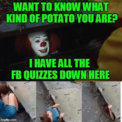 Vital information....is given to to trolls when taking FB quizzes. | WANT TO KNOW WHAT KIND OF POTATO YOU ARE? I HAVE ALL THE FB QUIZZES DOWN HERE | image tagged in it sewer / clown | made w/ Imgflip meme maker