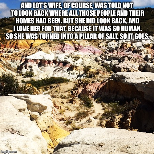 Human | AND LOT'S WIFE, OF COURSE, WAS TOLD NOT TO LOOK BACK WHERE ALL THOSE PEOPLE AND THEIR HOMES HAD BEEN. BUT SHE DID LOOK BACK, AND I LOVE HER  | image tagged in quotes | made w/ Imgflip meme maker