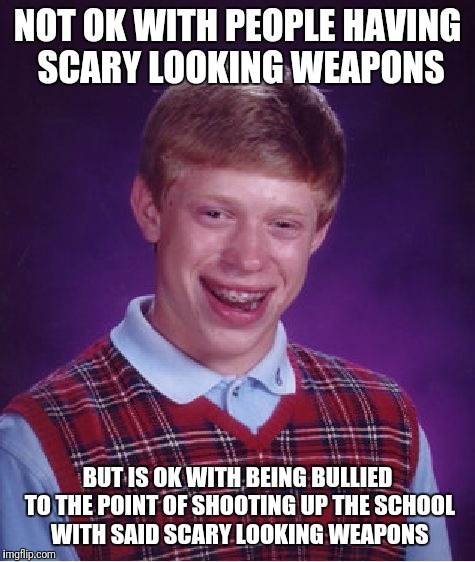 Bad Luck Brian Meme | NOT OK WITH PEOPLE HAVING SCARY LOOKING WEAPONS BUT IS OK WITH BEING BULLIED TO THE POINT OF SHOOTING UP THE SCHOOL WITH SAID SCARY LOOKING  | image tagged in memes,bad luck brian | made w/ Imgflip meme maker