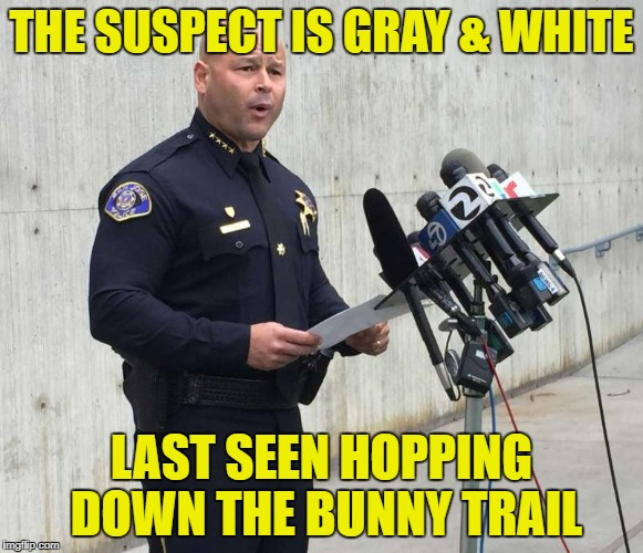 THE SUSPECT IS GRAY & WHITE LAST SEEN HOPPING DOWN THE BUNNY TRAIL | made w/ Imgflip meme maker