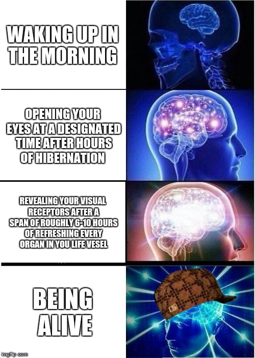 Expanding Brain Meme | WAKING UP IN THE MORNING OPENING YOUR EYES AT A DESIGNATED TIME AFTER HOURS OF HIBERNATION REVEALING YOUR VISUAL RECEPTORS AFTER A SPAN OF R | image tagged in memes,expanding brain,scumbag | made w/ Imgflip meme maker