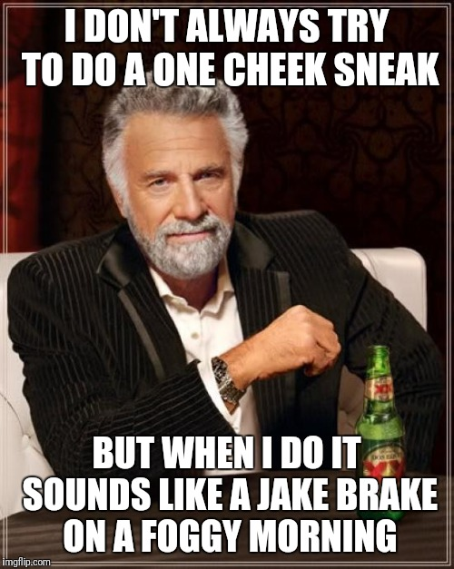 The Most Interesting Man In The World Meme | I DON'T ALWAYS TRY TO DO A ONE CHEEK SNEAK BUT WHEN I DO IT SOUNDS LIKE A JAKE BRAKE ON A FOGGY MORNING | image tagged in memes,the most interesting man in the world | made w/ Imgflip meme maker