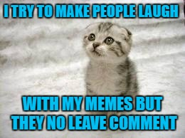 Sad Cat |  I TRY TO MAKE PEOPLE LAUGH; WITH MY MEMES BUT THEY NO LEAVE COMMENT | image tagged in memes,sad cat | made w/ Imgflip meme maker