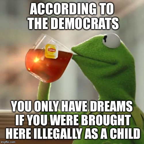 How about spreading some of that making dreams come true around, Democrats | ACCORDING TO THE DEMOCRATS YOU ONLY HAVE DREAMS IF YOU WERE BROUGHT HERE ILLEGALLY AS A CHILD | image tagged in memes,but thats none of my business,democrats,democratic party,illegal immigration,daca | made w/ Imgflip meme maker