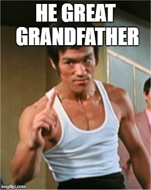 Bruce Lee Finger | HE GREAT GRANDFATHER | image tagged in bruce lee finger | made w/ Imgflip meme maker