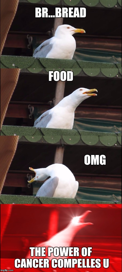 Inhaling Seagull Meme | BR...BREAD FOOD OMG THE POWER OF CANCER COMPELLES U | image tagged in memes,inhaling seagull | made w/ Imgflip meme maker