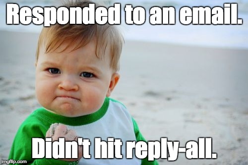 Success Kid Original Meme | Responded to an email. Didn't hit reply-all. | image tagged in memes,success kid original | made w/ Imgflip meme maker