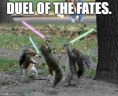 DUEL OF THE FATES. | image tagged in jedi squirrels | made w/ Imgflip meme maker