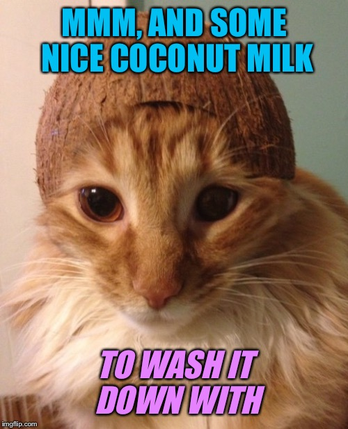 MMM, AND SOME NICE COCONUT MILK TO WASH IT DOWN WITH | made w/ Imgflip meme maker
