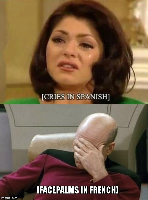 [Memes in English] | [FACEPALMS IN FRENCH] | image tagged in cries,spanish,jean luc picard,facepalm,subtitle | made w/ Imgflip meme maker