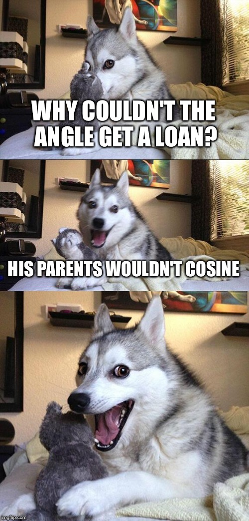 Bad Pun Dog Meme | WHY COULDN'T THE ANGLE GET A LOAN? HIS PARENTS WOULDN'T COSINE | image tagged in memes,bad pun dog | made w/ Imgflip meme maker