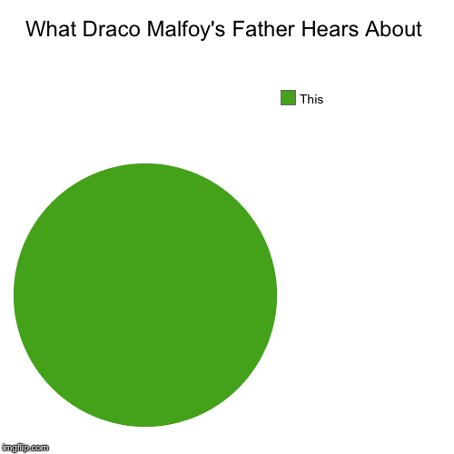 What Draco Malfoy's Father Hears About | This | image tagged in pie charts,harry potter | made w/ Imgflip chart maker