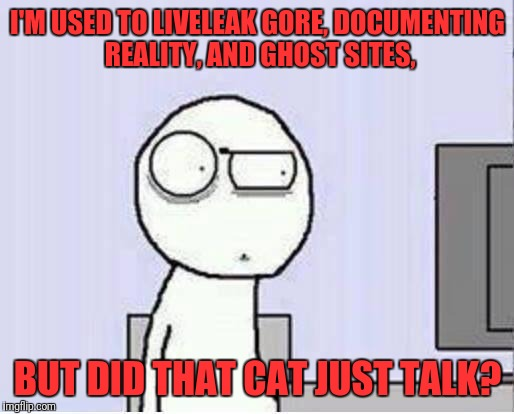 Shocked guy | I'M USED TO LIVELEAK GORE, DOCUMENTING REALITY, AND GHOST SITES, BUT DID THAT CAT JUST TALK? | image tagged in shocked guy | made w/ Imgflip meme maker