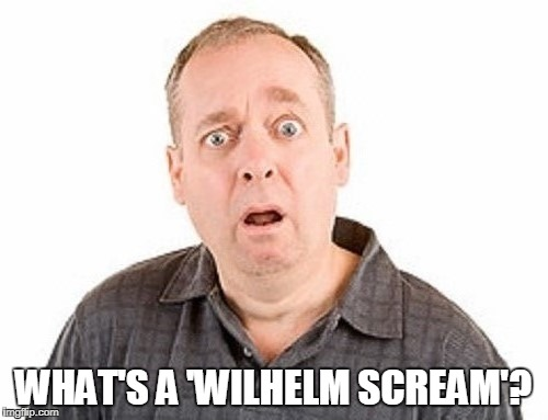 WHAT'S A 'WILHELM SCREAM'? | made w/ Imgflip meme maker