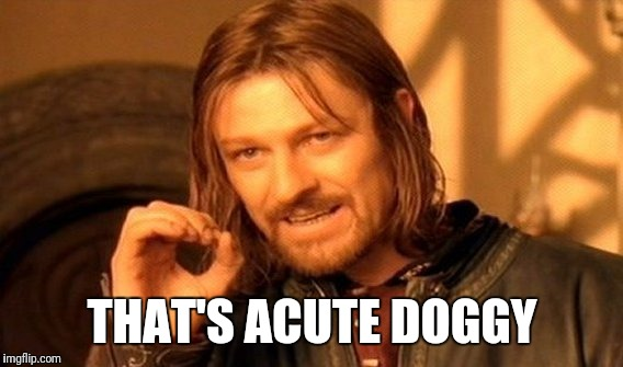 One Does Not Simply Meme | THAT'S ACUTE DOGGY | image tagged in memes,one does not simply | made w/ Imgflip meme maker