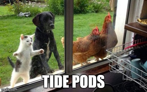 TIDE PODS | made w/ Imgflip meme maker