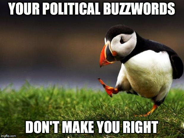 Unpopular Opinion Puffin Meme | YOUR POLITICAL BUZZWORDS DON'T MAKE YOU RIGHT | image tagged in memes,unpopular opinion puffin | made w/ Imgflip meme maker